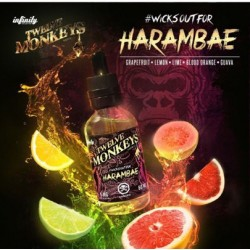 Harambae - Twelve Monkeys